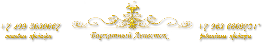 Logo Бархатный лепесток